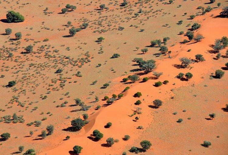800px-sand_dune_in_the_kalahari_desert_(namibia)-1016547692.jpg
