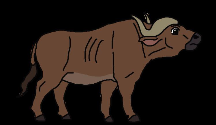 buffalo-clipart-png-871394-2531165